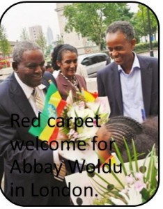 Tigray Republic flaunting her wealth at glittering TDA functions across the globe.