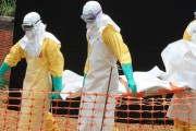 ebolastretcher