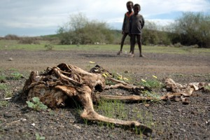 eTHIOPIA-worst-drought-of-africa-in-60-years