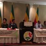 Representatives of Diverse Ethiopians formed: