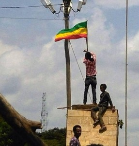 Ethiopia on the transition from total dictatorship: the role of individuals and organisations