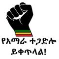 amhara-resistance