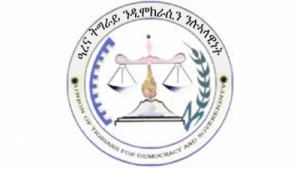 arena-tigray-logo