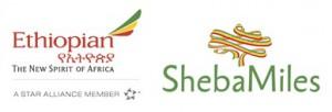 shebamiles1