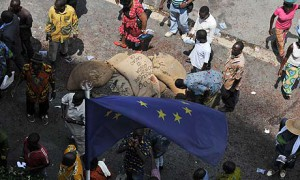 MDG : EU  and African countries trade agreements : Cocoa's growers in Abidjan, Ivory Coast
