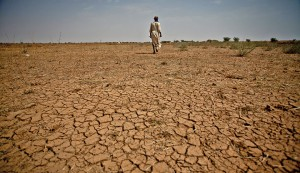 """FAMINE, STARVATION AND DEATH IN ETHIOPIA RENAMED BY ITS GOVERNMENT AS """"FOOD INSECURITY"""""""