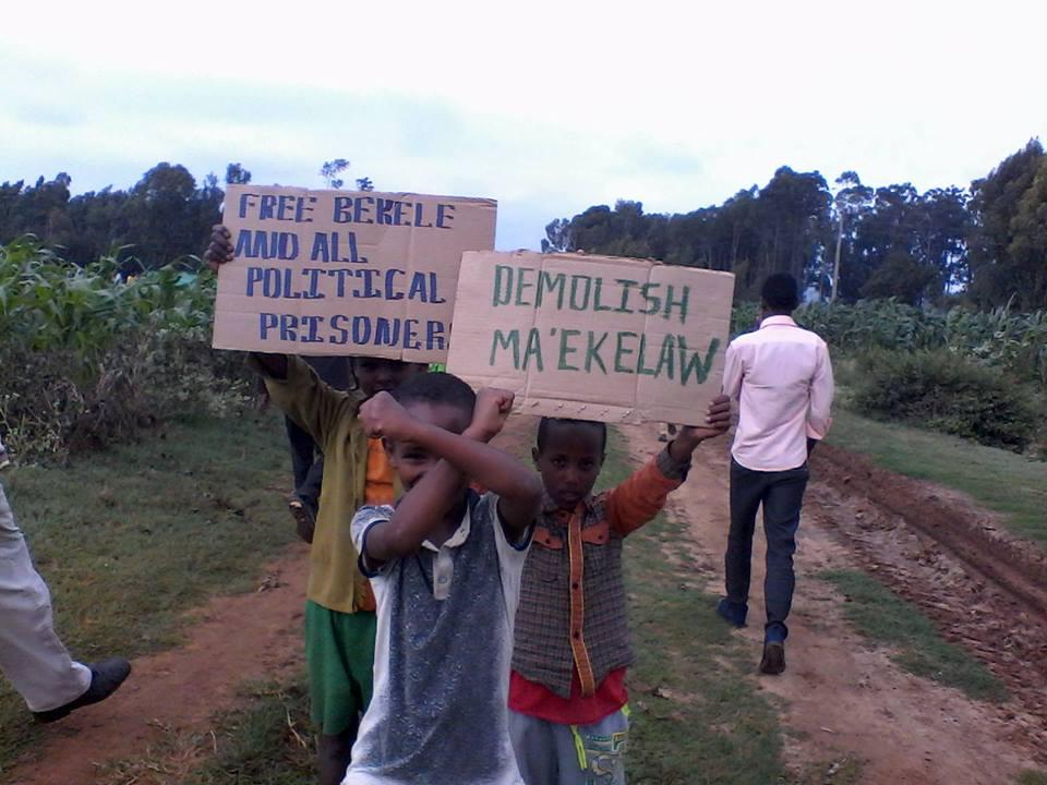 free bekele demolish maikelawi