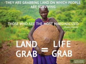 land_grab_life_grab2