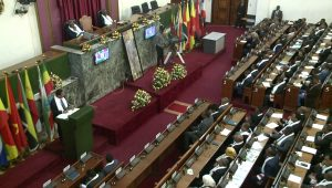 tplf-meeting-parl