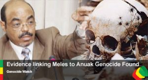 meles-genocide