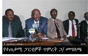 tigistu-so-called-opposition