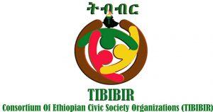 TIBIBIR Press Release on the tragic events in Weldya