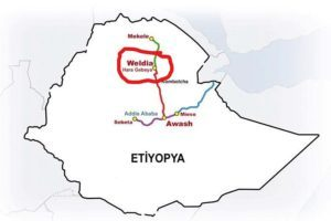Ethiopia: AHRE condemns killings of civilians in Woldia town during a religious festival