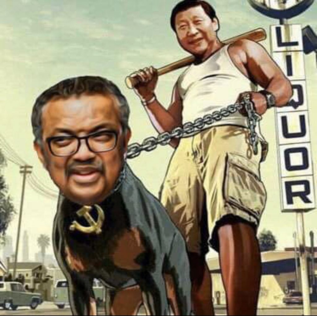This image has an empty alt attribute; its file name is tedros-and-china-1-1024x1021.jpg